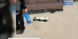 Опора перил упала на голову женщине в Иркутске