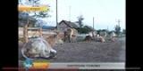 Иркутская область: грозит ли региону сибирская язва?